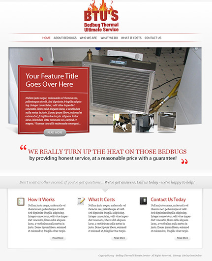Bed bug thermal ultimate service - original web design