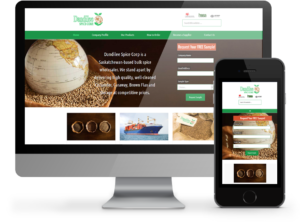Dandilee Spice website - OmniOnline saskatchewan based Web Professionals
