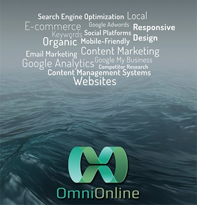OmniOnline - simplifes Hosting choices for Business